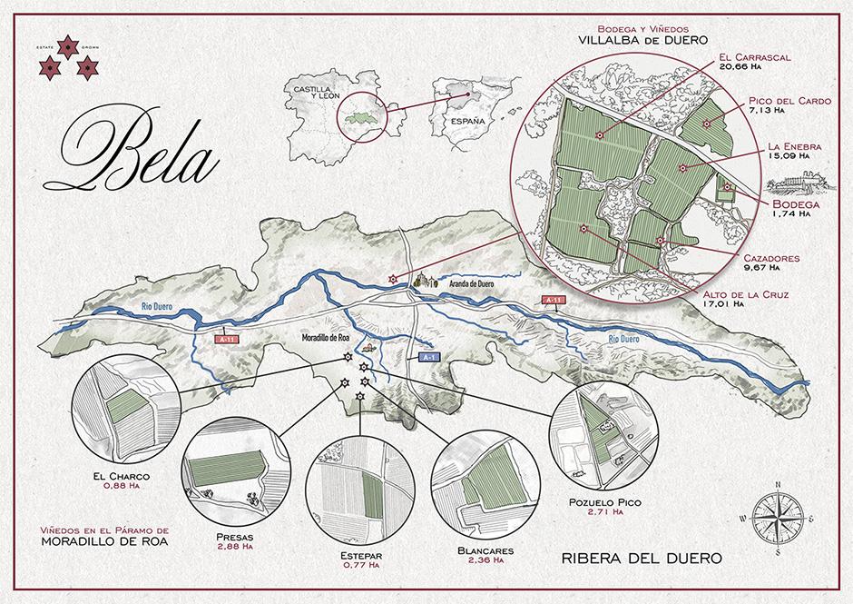 Bela vineyards
